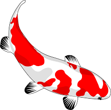 cartoon koi fish clipart cliparts and others art inspiration