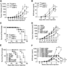a critical role of autocrine sonic hedgehog signaling in human