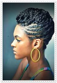 black braids hairstyles updos hairstyle picture magz
