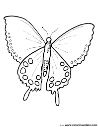 big beautiful butterfly coloring print out create a printout or