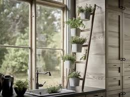 herbs indoors 5 indoor herb garden ideas for your kitchen architectural digest