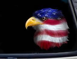Bald Eagle On Flag Eagle Tagged