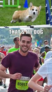 Ridiculously Photogenic Guy Meme - image 313142 ridiculously photogenic guy zeddie little know