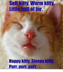 Soft Kitty Meme - soft kitty warm kitty little ball of fur happy kitty sleepy kitt
