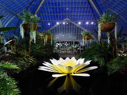 Phipps Conservatory Botanical Gardens by Phipps Conservatory Lights Up The Night With Extended Hours For