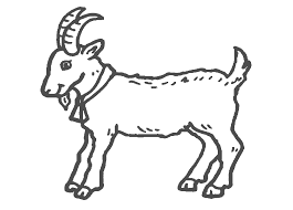 goat coloring page band leader mountain goat coloring pages more