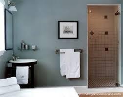 Color Ideas For Small Bathrooms Delightful Good Bathroom Colors For Small Bathrooms Ideas Best