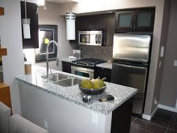 Interior Design Small Kitchen Impressive Modern Kitchen For Small Condo Fabulous Interior