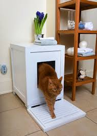Cool Cat Furniture Indoor Cat House Design Ideas Real House Design Cat