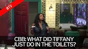 Tiffany Pollard Nude Pictures - did tiffany pollard just masturbate in the toilets celebrity big