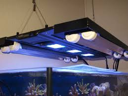 t5 lighting fixtures for aquariums lets see those led with t5 supplements reef2reef saltwater and