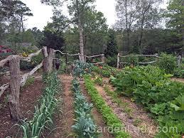 gardenlady com a beautiful veggie garden you can grow that