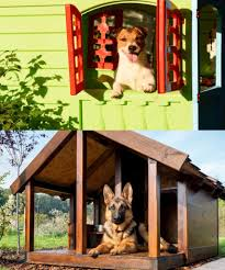 Are Igloo Dog Houses Warm Dog House Material Wood Or Plastic Paw Castle