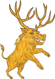 drawing sketch style illustration of a wild pig boar razorback