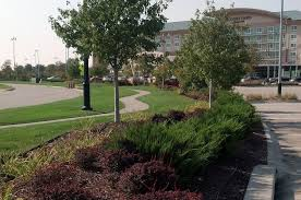 Landscaping Lawn Care by Landscaping Lawn Care Pictures Diy Landscaping Lawn Care Plans