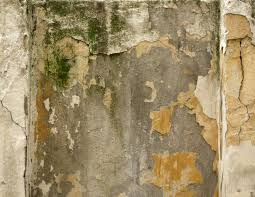 wall with damaged yellow paint and moss download free textures