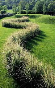 104 best ornamental grasses images on landscaping