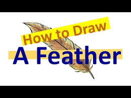 how to draw a feather draw u0026 paint inspirationoftheday youtube