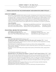 Sample Resumes For Sales Executives Resume Sample Of Business Development Executive