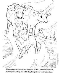 farm animals coloring page 103 best farm mandalas images on pinterest the farm drawings