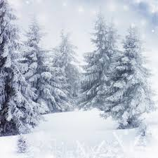 christmas photo backdrops aliexpress buy gray winter photography backdrops snow world