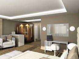 exquisite ideas best paint colors for living room valuable design
