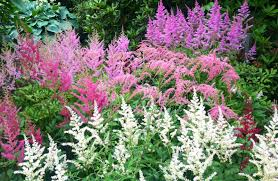 Boothbay Botanical Gardens by Off To Orono Coastal Maine Botanical Gardens