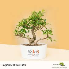 corporate gifts delhi creative corporate gifts for clients and