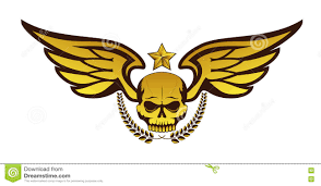 skull wings stock photos royalty free pictures
