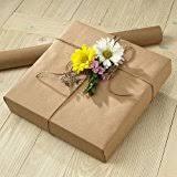postal wrapping paper plain kraft wrapping paper postal wrap 102 5 sq ft