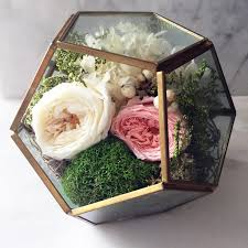 hello gorgeous forever preserved rose terrarium pink u0026 white