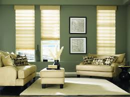 vinyl roller shades sears clanagnew decoration