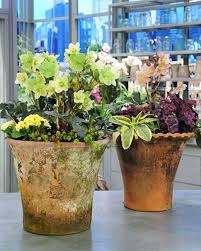 Spring Garden Ideas Spring Container Planting U0026 Video Martha Stewart