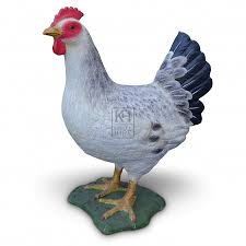 themes prop hire farmyard white hen chicken keeley hire