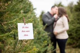christmas tree farm maternity session nj maternity photographer