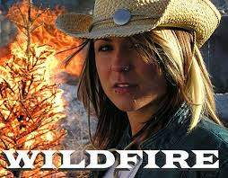 Wildfire Dance by Book Wildfire The Country Rock Band Here Finegold