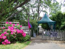 abkhazi garden stay and play victoriastay and play victoria