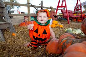 fall family fun events only in arkansas
