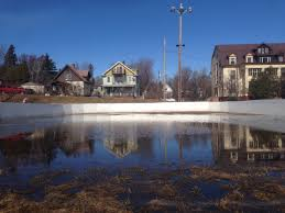 the ponds the rinks the roots where the love of the game is born