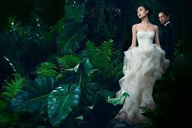 vera wang charges 500 to try on dress would you pay upi com