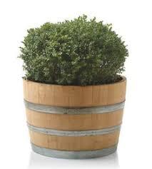 whiskey barrel planter decors good ideas for wooden flower pots