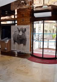 office de tourisme monaco rhinoceros 20black 20rhino 20diceros
