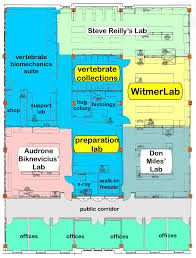 witmerlab facilities