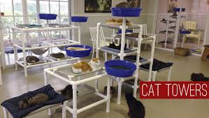 cat furniture by feline snoozers cat trees cat towers cat beds