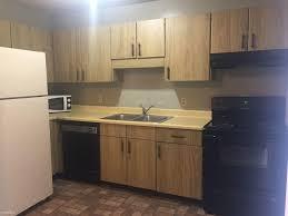 Kitchen Cabinets Chattanooga Tn 603 Ashland Ter 8 For Rent Chattanooga Tn Trulia