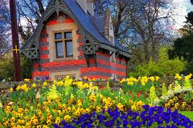 Australian Garden Flowers by Garden Tag Wallpapers Botanic Garden Flowers Australia Glasshouse