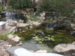 diy backyard pond design and ideas of house