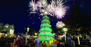 point loma christmas lights top 5 streets in san diego to view holiday lights the selby team