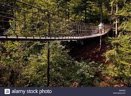 Bad Berleburg Hängebrücke Entlang Dem Wald Skulpturenweg Waldskulpturenweg
