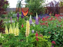 Family Garden Longmont Where Kindness Blooms Houses For Rent In Longmont Colorado